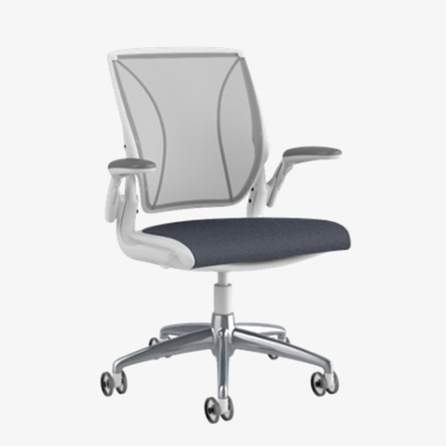 Humanscale Diffrient Chair